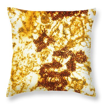 Foot And Mouth Disease Throw Pillow