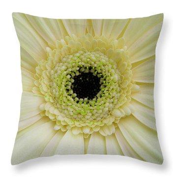 Gerber Rainbow Yellow Throw Pillow