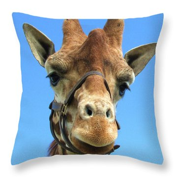 Giraffe Close Up  Throw Pillow