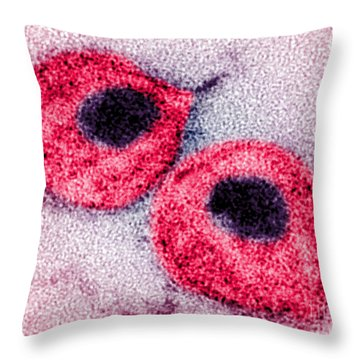 Hiv Throw Pillow by Science Source