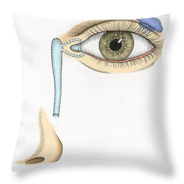 Illustration Of Tear Duct Throw Pillow by Science Source