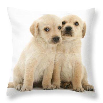 Labrador Retriever Puppies Throw Pillow by Jane Burton