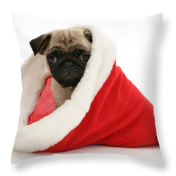 Pug Puppy Throw Pillow by Jane Burton