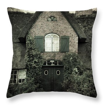 Thatch Throw Pillow by Joana Kruse
