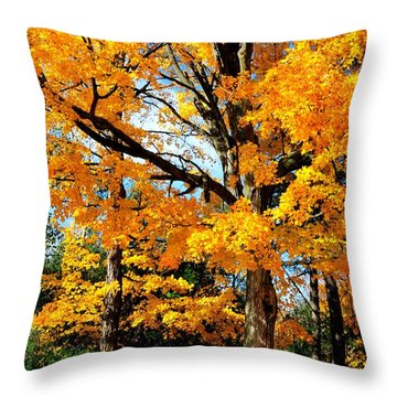Throw Pillow featuring the photograph Tree Of Gold by Joe  Ng