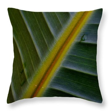 Throw Pillow featuring the photograph Wild Banana Leaf by Werner Lehmann