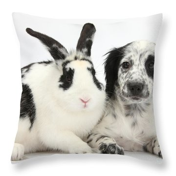 Puppy And Rabbit Throw Pillow by Mark Taylor