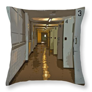 3456 Throw Pillow by Gwyn Newcombe