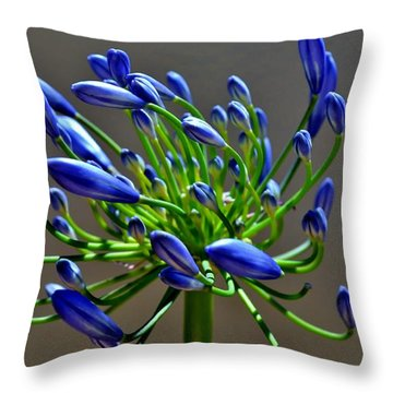 Agapanthus Campanulatus Throw Pillow