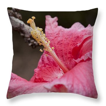 Art By Nature Throw Pillow by Sharon Mau