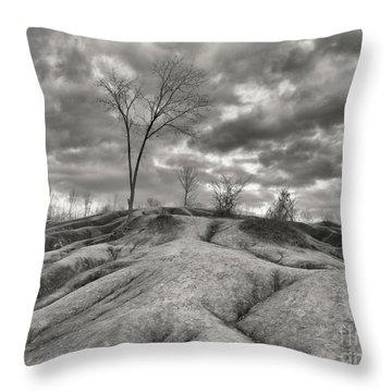 Badlands Throw Pillow by Oleksiy Maksymenko
