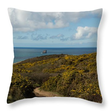 Cornish Seascape St Agnes  Throw Pillow by Brian Roscorla
