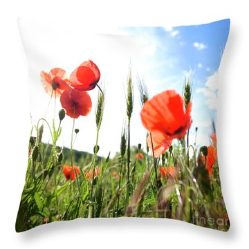 Field Of Poppies. Throw Pillow by Bernard Jaubert