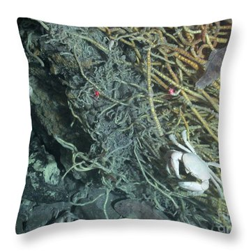 Hydrothermal Vent Community Throw Pillow