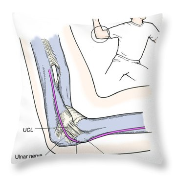 Illustration Of Elbow Ligaments Throw Pillow by Science Source