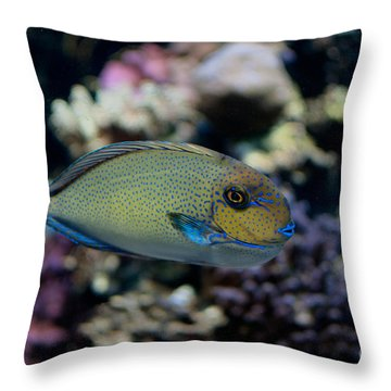 Tropical Fish Throw Pillow by Carol Ailles