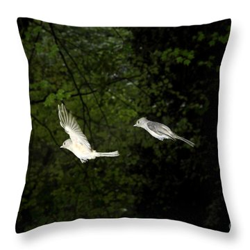 Tufted Titmouse In Flight Throw Pillow by Ted Kinsman