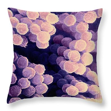 Aspergillus Throw Pillow by Science Source