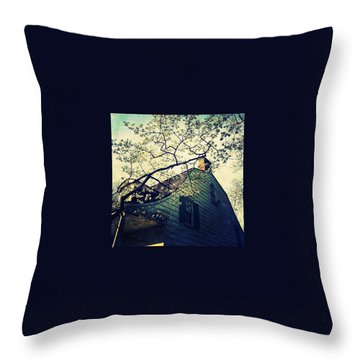 Dutch Throw Pillows