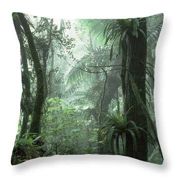 El Yunque National Forest Throw Pillow by Thomas R Fletcher