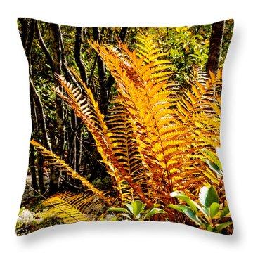 Fall Color Fern Throw Pillow by Thomas R Fletcher