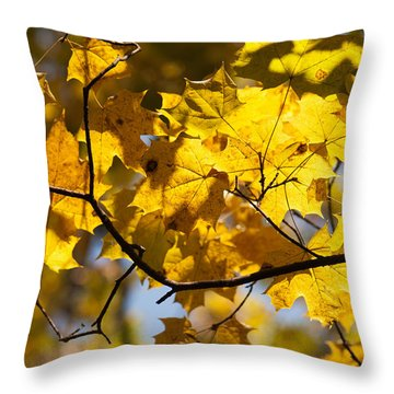 Maple Throw Pillow by Igor Sinitsyn