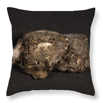 Owl Pellet Throw Pillow by Ted Kinsman