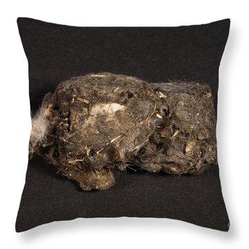 Owl Pellet Throw Pillow by Ted Kinsman