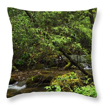 Rushing Mountain Stream Throw Pillow by Thomas R Fletcher