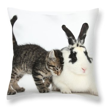 Kitten And Rabbit Throw Pillow by Mark Taylor