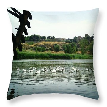 Instagram Photo Throw Pillow by Javier Moreno