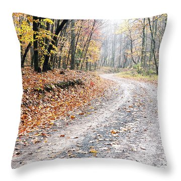 Autumn Monongahela National Forest Throw Pillow by Thomas R Fletcher