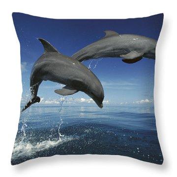 Bottlenose Dolphin Tursiops Truncatus Throw Pillow by Konrad Wothe