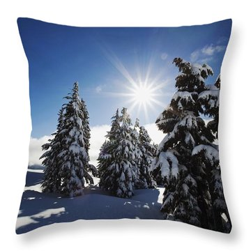 Oregon Cascades, Oregon, United States Throw Pillow by Craig Tuttle