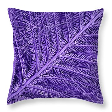 Sem Of Eastern Bluebird Feathers Throw Pillow by Ted Kinsman