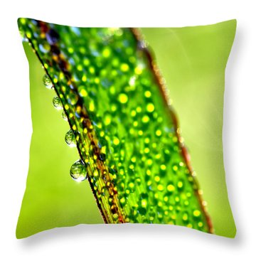 Dewdrops On Lemongrass Throw Pillow by Thomas R Fletcher