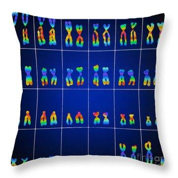 Male Karyotype Throw Pillow by Omikron