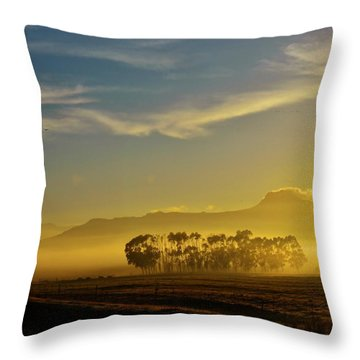 Blue Gum Trees Throw Pillow