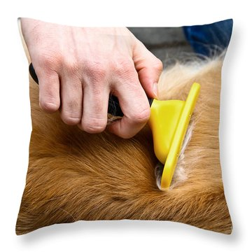 Dog Grooming Throw Pillow by Photo Researchers, Inc.