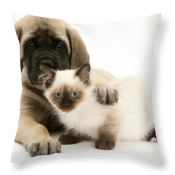 Puppy And Kitten Throw Pillow by Jane Burton