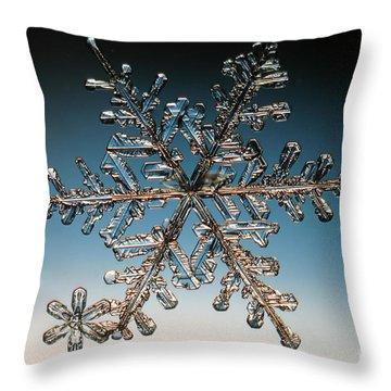 Snowflake Throw Pillow by Ted Kinsman