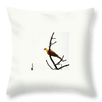 Finch Throw Pillows
