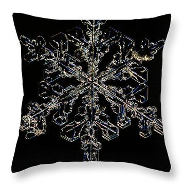 Snowflake Throw Pillow by Ted Kinsman
