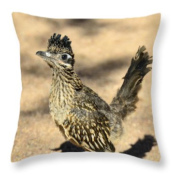 A Baby Roadrunner  Throw Pillow