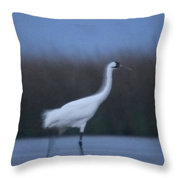 A Banded Whooping Crane In Aransas Throw Pillow