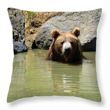A Bear's Hot Tub Throw Pillow by Methune Hively