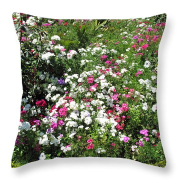 Throw Pillow featuring the photograph A Bed Of Beautiful Different Color Flowers by Ashish Agarwal