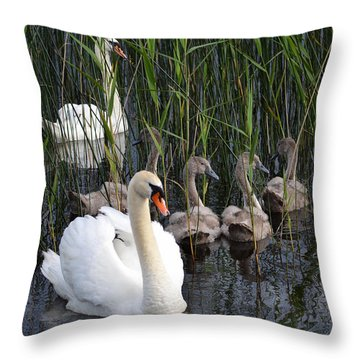 A Bevy  Of Swans. Throw Pillow