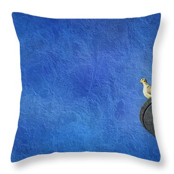 A Birds Eye View Throw Pillow by Andee Design