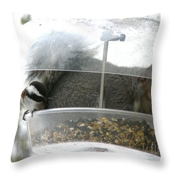 Throw Pillow featuring the photograph A Bit Crowded by Rory Sagner